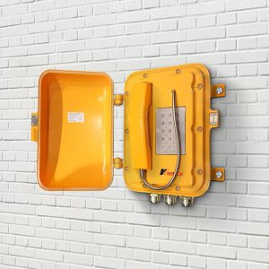 Wall mounted ATEX certified telephone KNEX06